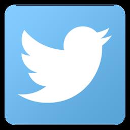 Twitter-256 (1)